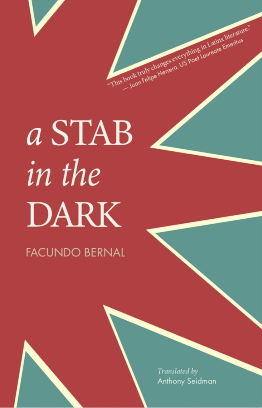 """Book jacket for """"A Stab in the Dark"""" by Facundo Bernal/ Translated by Anthony Seidman."""