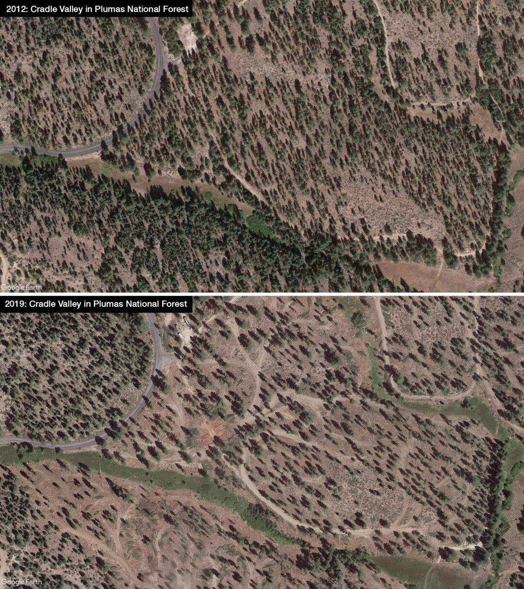 """""""Before and after"""" satellite imagery of a logged forest."""
