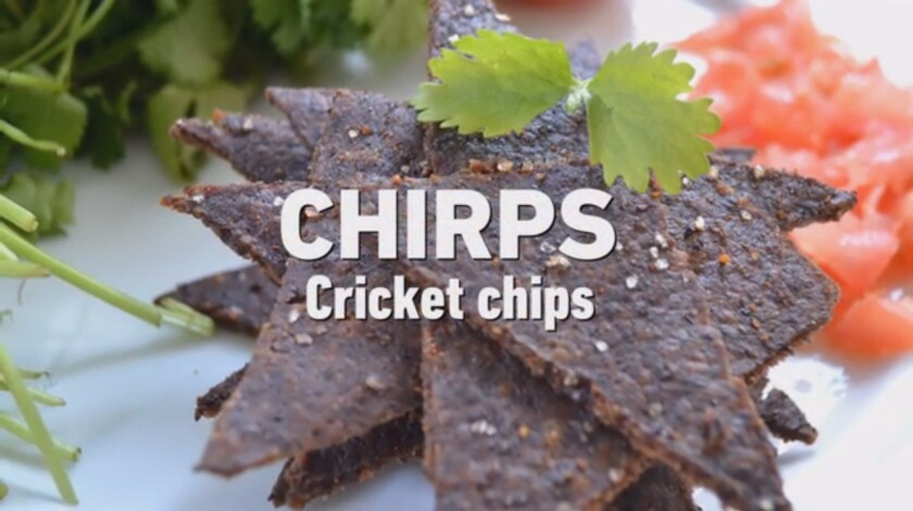 Chirps cricket chips are made with cricket flour.