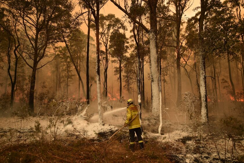 An Australian firefighter sprays fire retardant on a back burn in the New South Wales town of Jerrawangala on Wednesday.