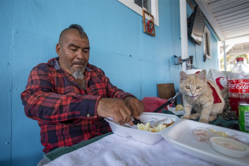 Pancho Sambrano shares lunch with her cat Ice Cream at Mary's Kitchen in Orange on Tuesday July 13th.