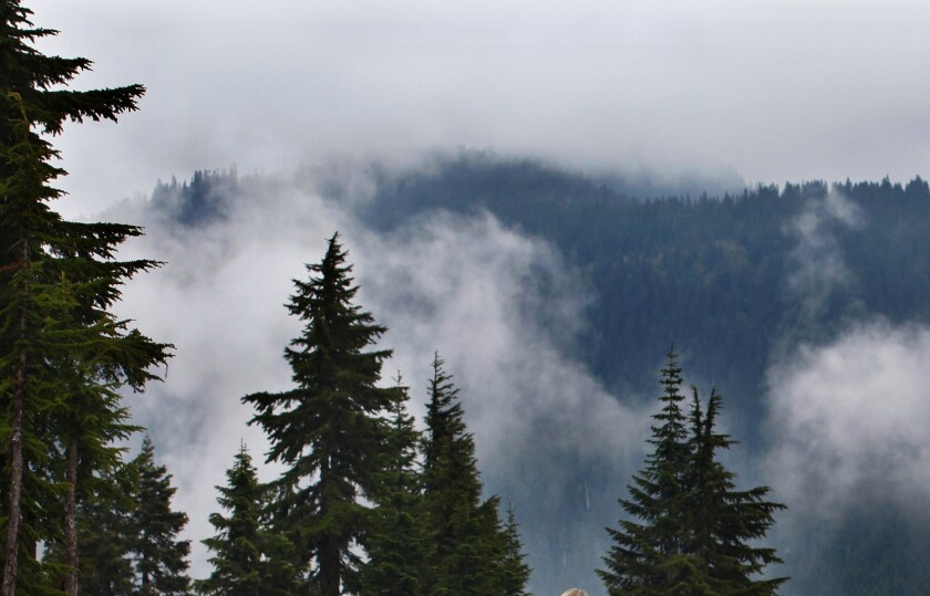 Stevens Pass is pictured in July 2011 at the Cascade mountains in Washington.