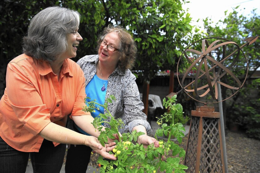 Linda Garcia, left, and Susan Ramsey had planned to move to Portland, Ore., this year, but fee-only financial planner Carol Somoano advises them to wait.