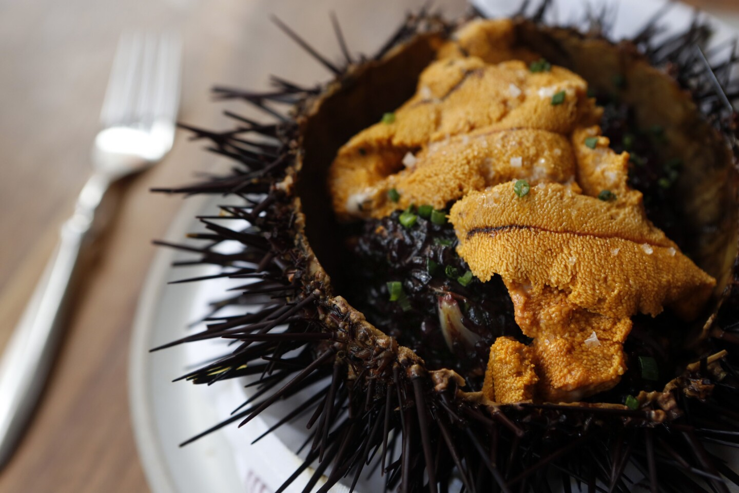 Uni, or sea urchin, rests on a bed of black risotto served inside a hollowed shell of a sea urchin at Dudley Market restaurant in Venice.