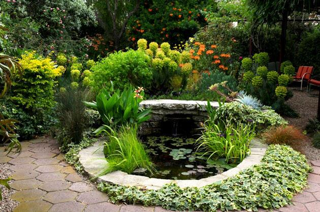 Stephen Orr's 'Tomorrow's Garden'