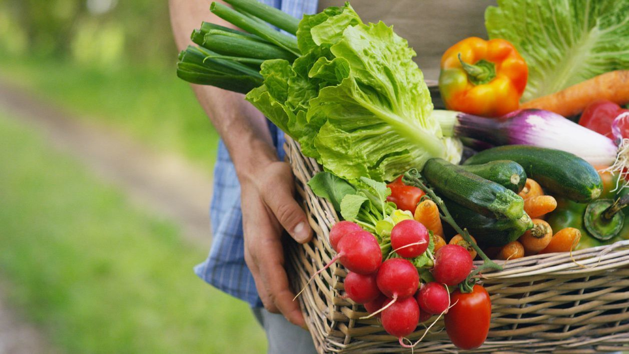 Gardening: Hard and easy vegetables to grow - Pomerado News