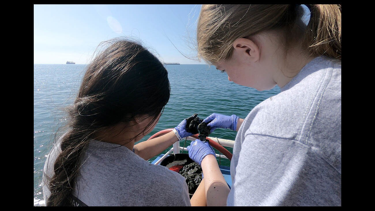 Photo Gallery Clark Magnet students collect sediment samples from the mouth of the L.A. River for heavy metals testing