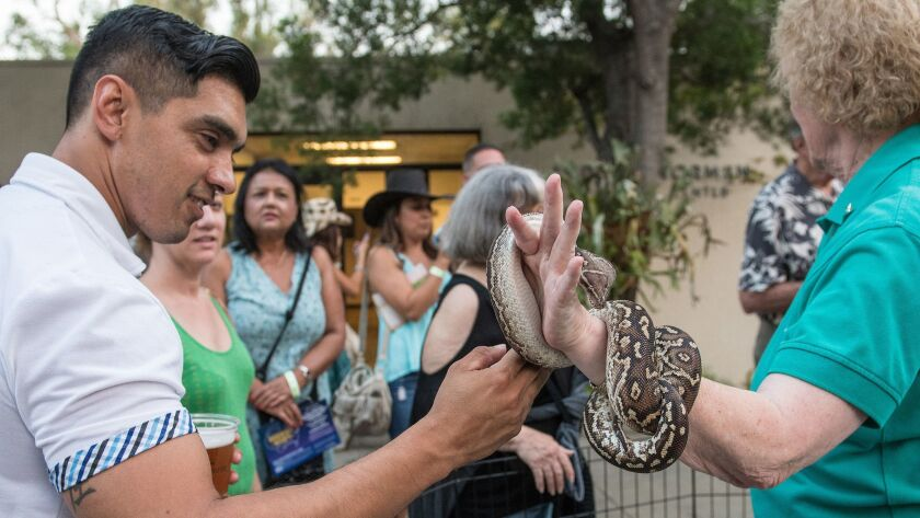 Visitors get an up-close encounter with animals at a previous L.A. Zoo Roaring Nights. This year's a