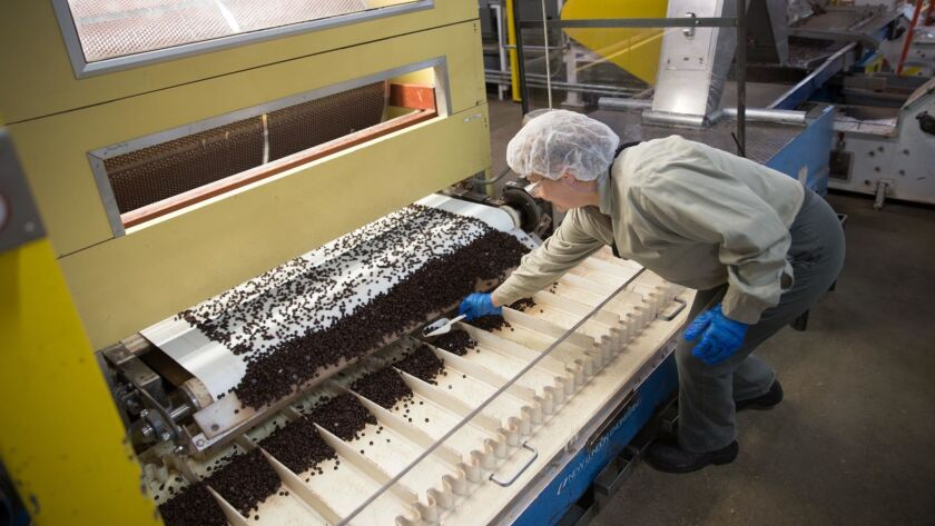 Lead drop operator Zofia Zhabura gathers cocoa drops to count them during processing at the Blommer Chocolate factory in Chicago on May 12, 2014. The family that owns the company is considering selling it, according to a Bloomberg report.