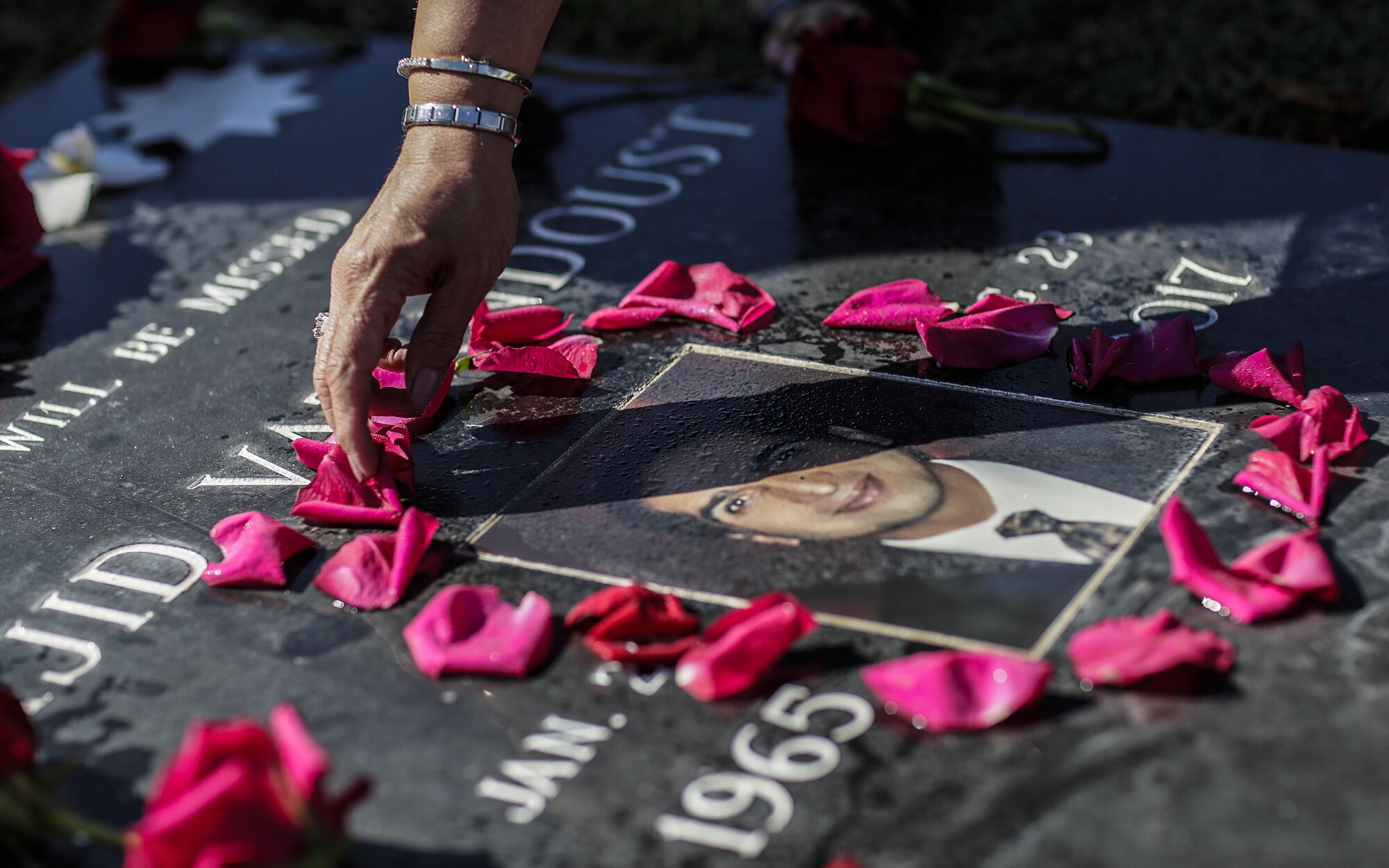 Pink flower petals in a ring around a man's photo on his gravestone