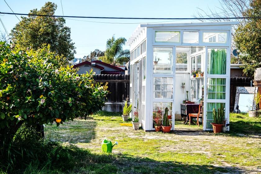 A rectangular greenhouse with a slightly slanted roof built of discarded windows and doors in a garden.