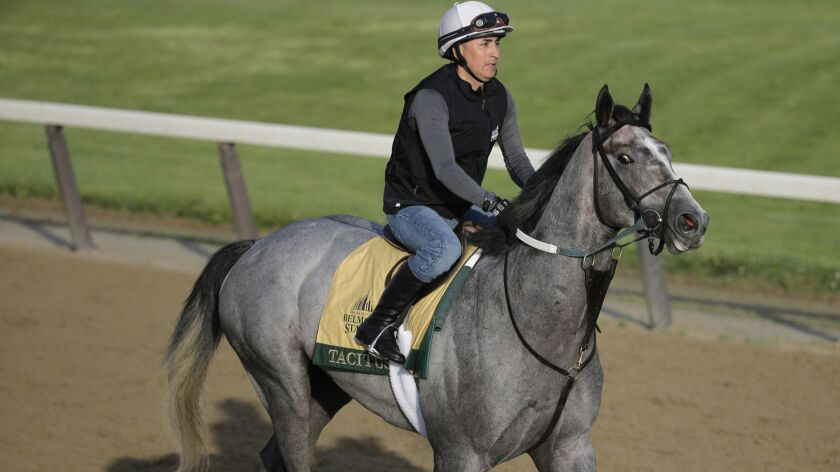 Belmont Stakes 2019 preview: A horse-by-horse look at the