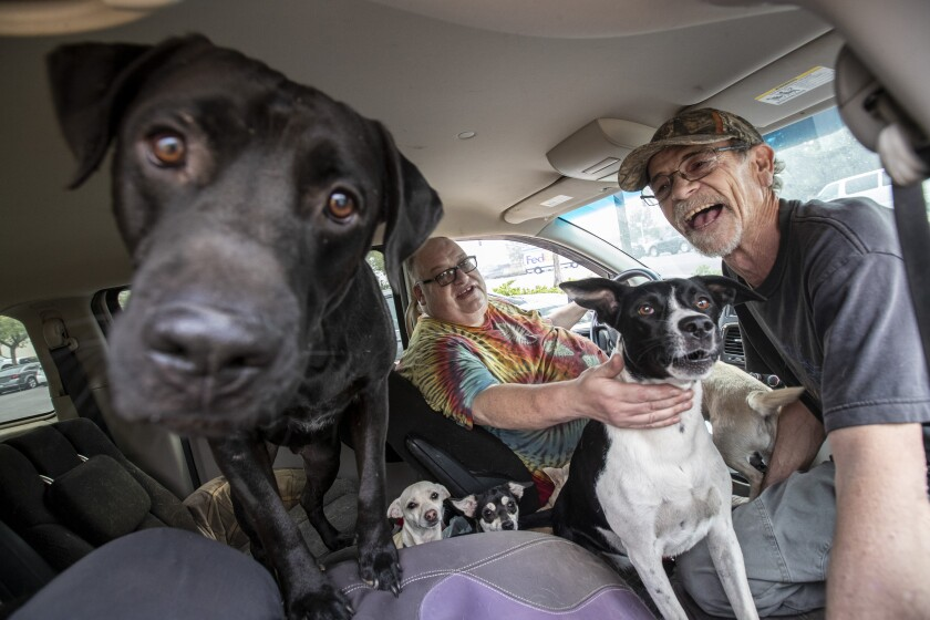 Frank Martinez, left, and Rick Wolfe sit in Martinez's van with their dogs in the Bear fire's aftermath in Oroville, Calif.
