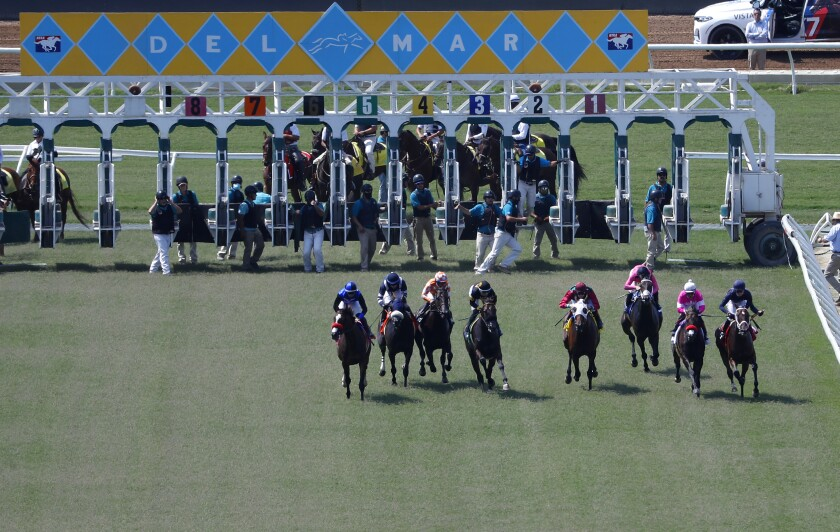 Horses come out of the starting gate for the third race on opening day at the Del Mar Thoroughbred Club on Friday.