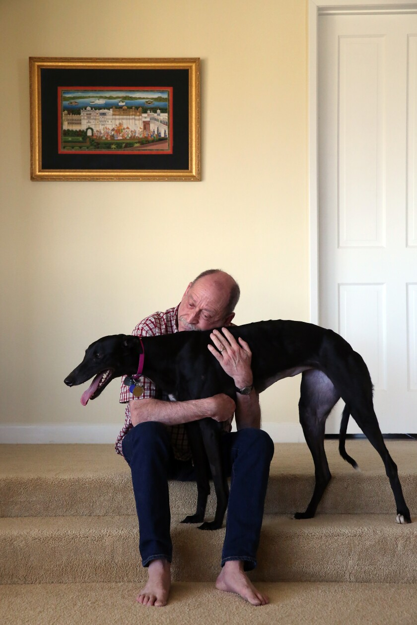 Tim Lignoul, sitting on carpeted steps, hugs his greyhound Vicky,