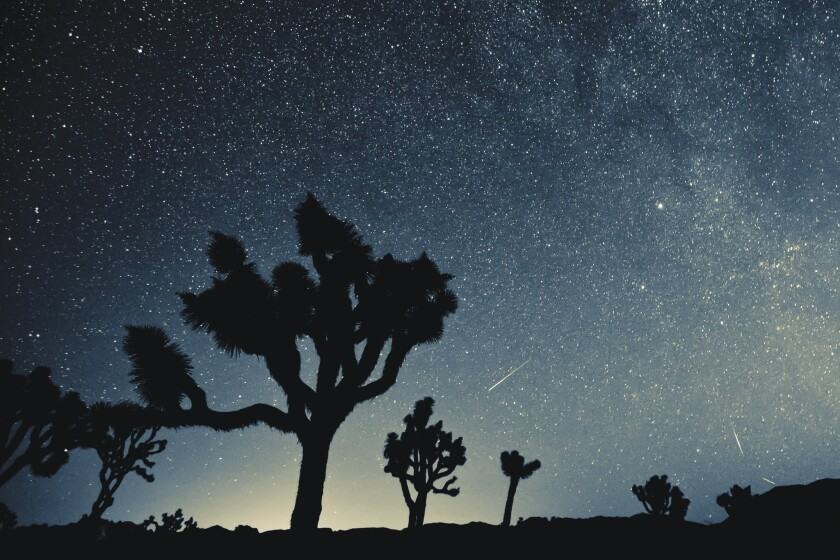 Joshua Tree National Park, renowned for its dark skies, is the ideal spot for stargazers and their telescopes.