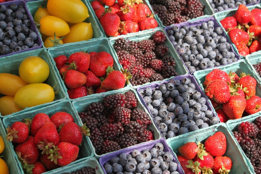 Berry Boxes
