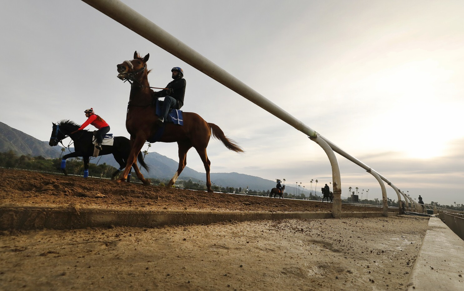 Horse Racing Newsletter Congrats To Nadal On A Kentucky Derby Trail Worthy Performance Los Angeles Times