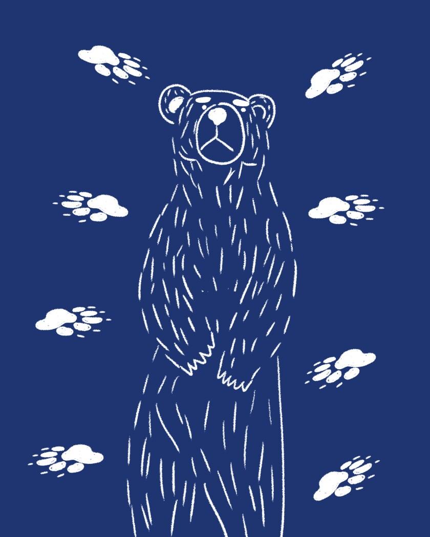 Mt. Whitney bear bag thief.