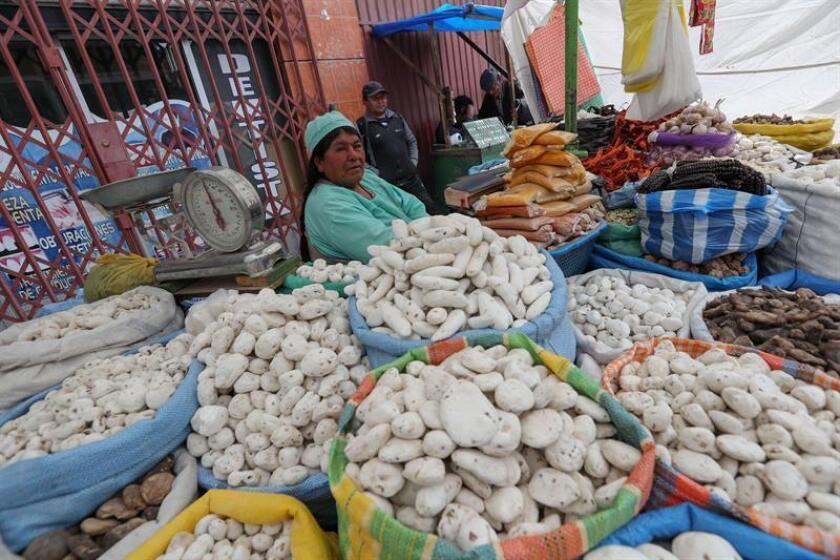El Fondo Monetario Internacional (FMI) mejoró hoy sus previsiones de crecimiento económico para Bolivia al 4,5 % este año y mantuvo sin cambios en el 4,2 % las de 2019, lo que sitúa al país andino al frente la expansión en Suramérica. EFE/archivo
