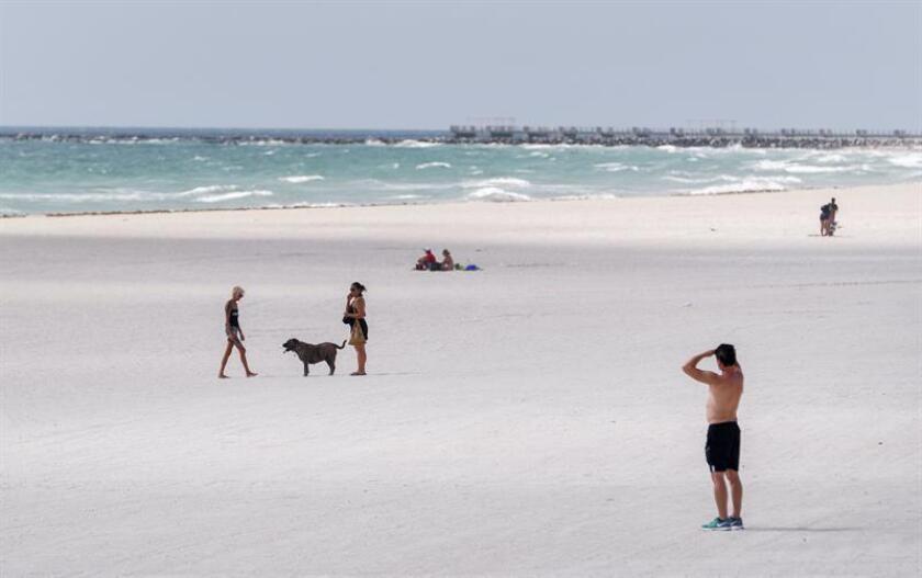 La marea roja que ha afectado desde 2017 la costa oeste de Florida, donde el alga tóxica que la produce ha matado a miles de peces, llegó de forma inusual a las costas del este del estado y obligó al cierre de varias de playas del condado Palm Beach, al norte de Miami. EFE/Archivo