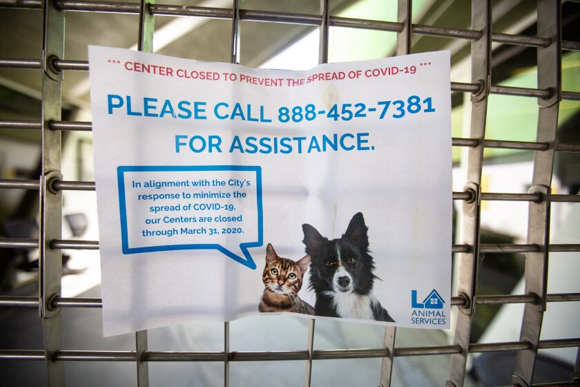 A sign at the animal shelter in Chesterfield Square.