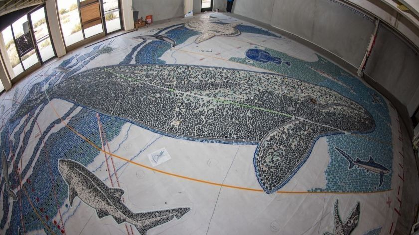 The Map is shown last year, when the tile mosaic was prefabricated in the abandoned former NOAA Fisheries Building at Scripps Institution of Oceanography.