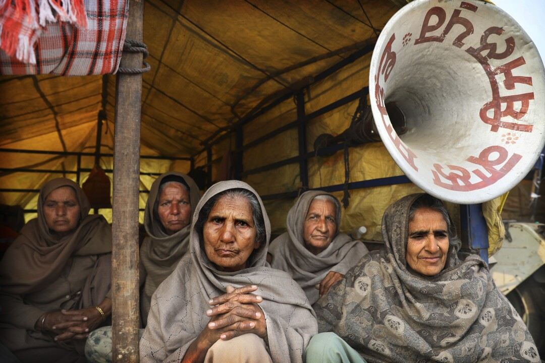 Elderly female farmers sit at the back of a trailer as they participate in a protest against new farm laws