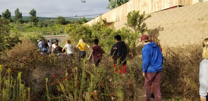 The eighth-grade AVID (Advancement Via Individual Determination) class at Correia Middle School walks a trail through the Famosa Slough.