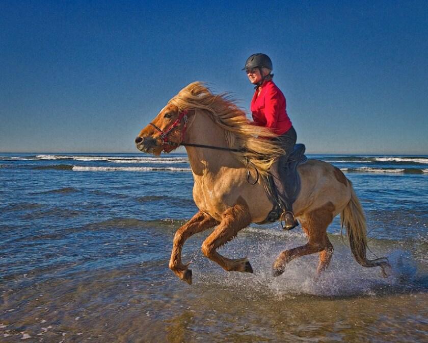 Sunland Ranch owner Kimberly Hart riding Icelandic horse Hroar.