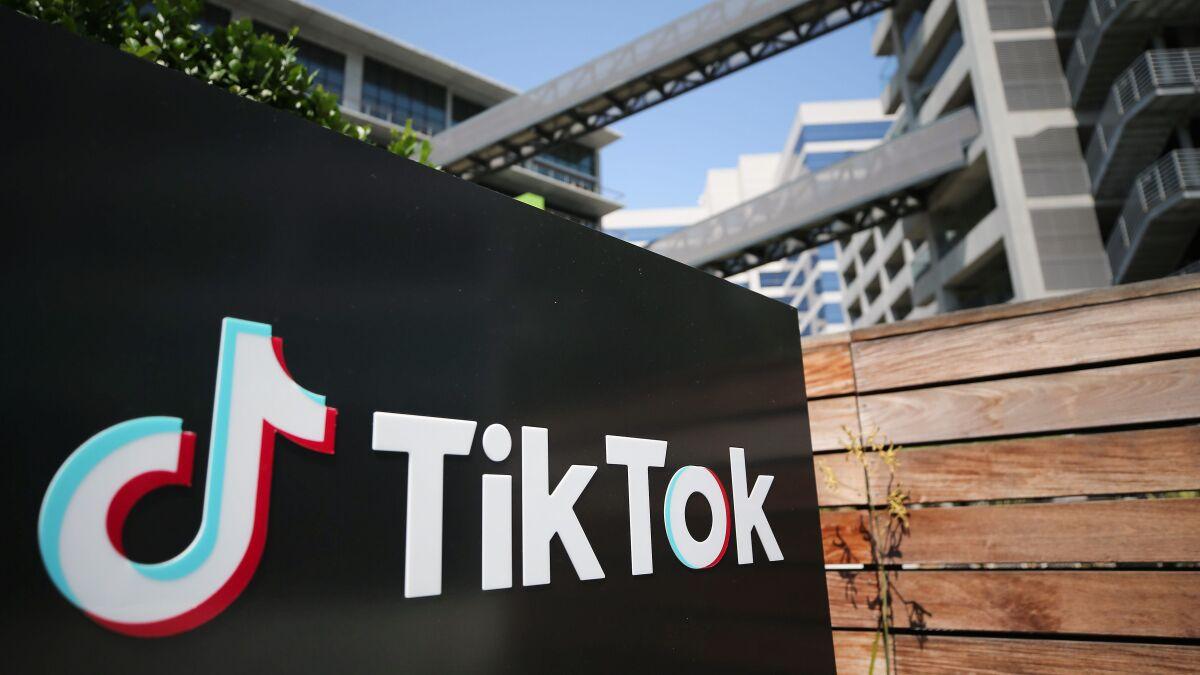 Image of article 'TikTok gets a reprieve as U.S. delays enforcement of sale order'