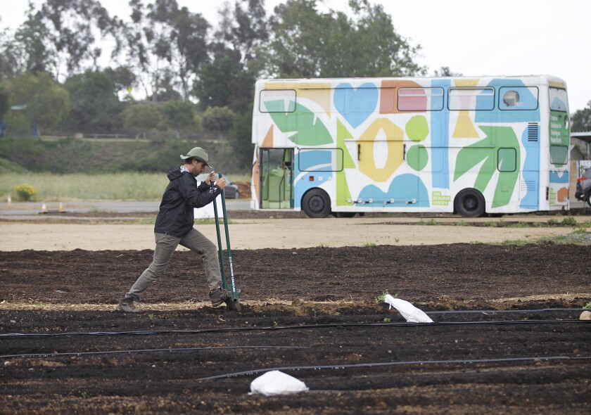 Carter Wallace de-compacts soil in the market garden area of the Encinitas Union School District's Farm Lab. The bus for the project's partner, the Ecology Center in San Juan Capistrano, is parked in the background.