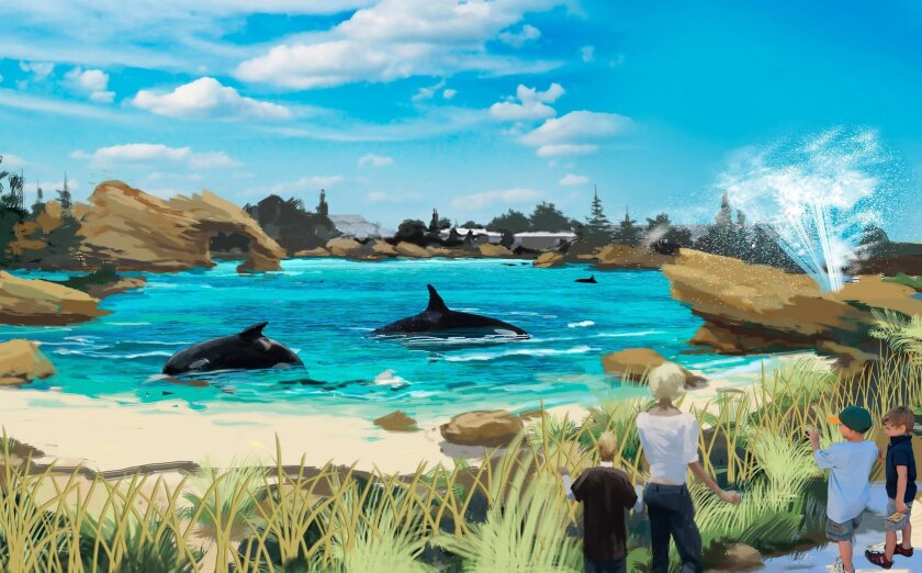 SeaWorld is hoping to win approval from the Coastal Commission for a $100 million plan to enlarge the killer whale tanks as part of a new attraction showcasing the orcas.