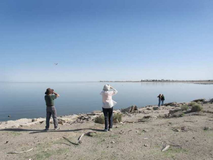 San Fernando Valley roundup: Community college leaders fear Prop. 30 failure, Salton Sea likely source for foul odor