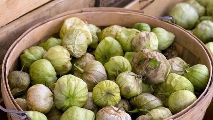 Tomatillos grown by Jimenez Family Farm in Santa Ynez.