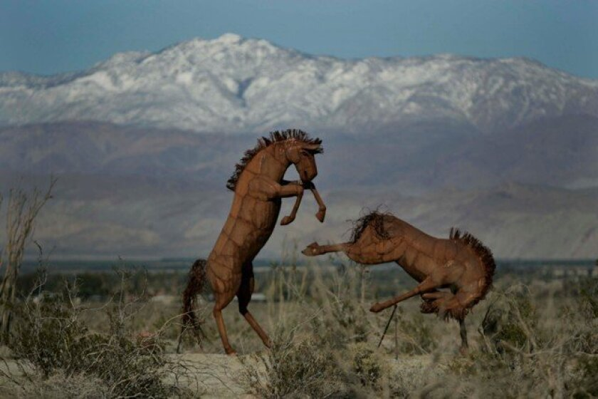 Snow draped mountains were a different backdrop for sculptures of two wild horses fighting each other in a field off of Borrego Springs Road. They are the work of artist Ricardo Breceda and on the property of Dennis Avery, just two of dozens of sculptures spread on his property that seem to change