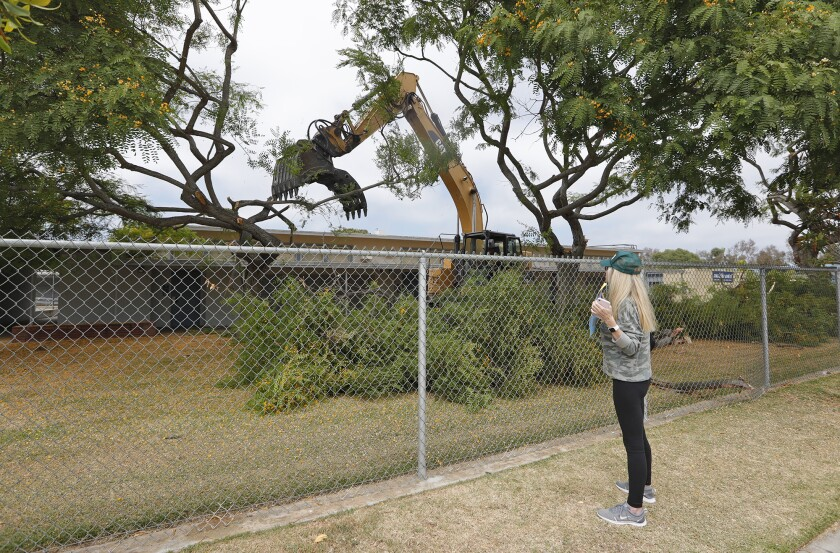 Resident Christine Salem watches a contractor remove trees at Ensign Intermediate School.