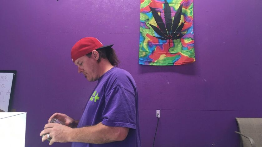 """Thomas Grier works as a """"bud tender"""" at Canna Can Help Inc., a medical marijuana dispensary in Goshen, Calif."""
