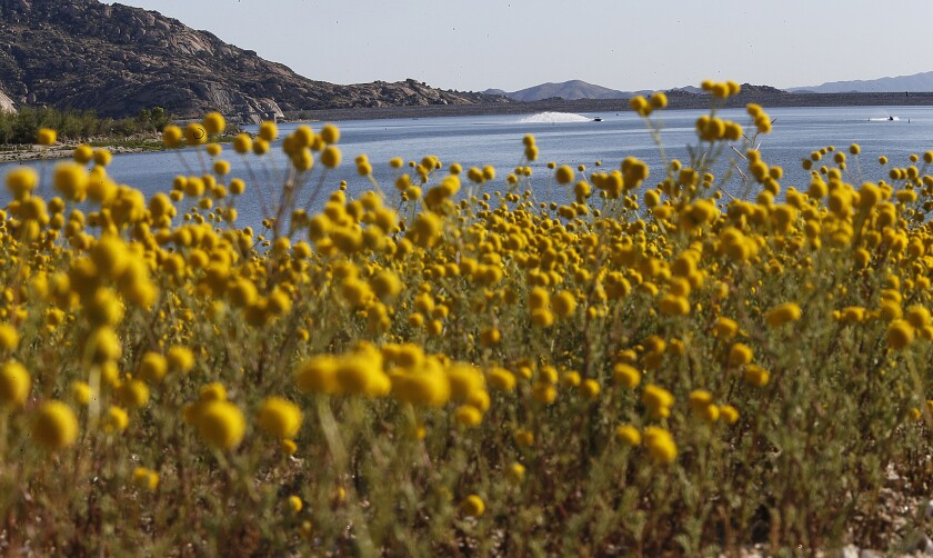 Lake Perris