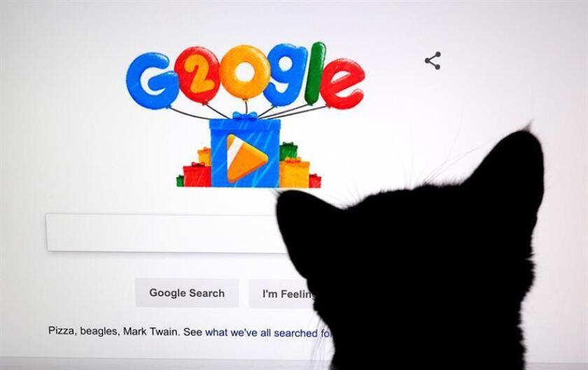 Fotografía de archivo fechada el 27 de septiembre de 2018 que muestra a un gato frente a una pantalla con el doodle por los 20 años de Google, en Mountain View, California (EE.UU.). EFE