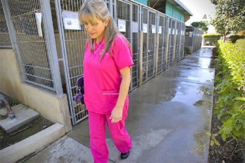 On an unannounced visit yesterday, veterinarian Ginny Bischel 