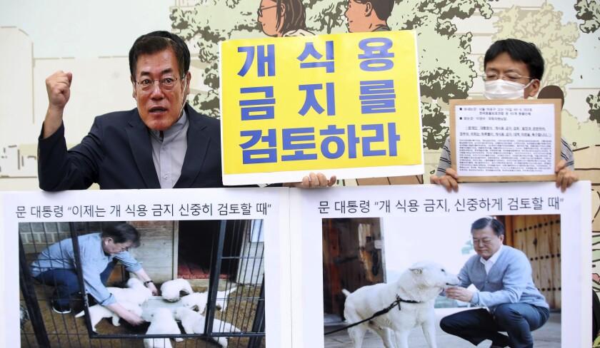 Un miembro de la Asociación Coreana para la Protección de los Animales, con una máscara