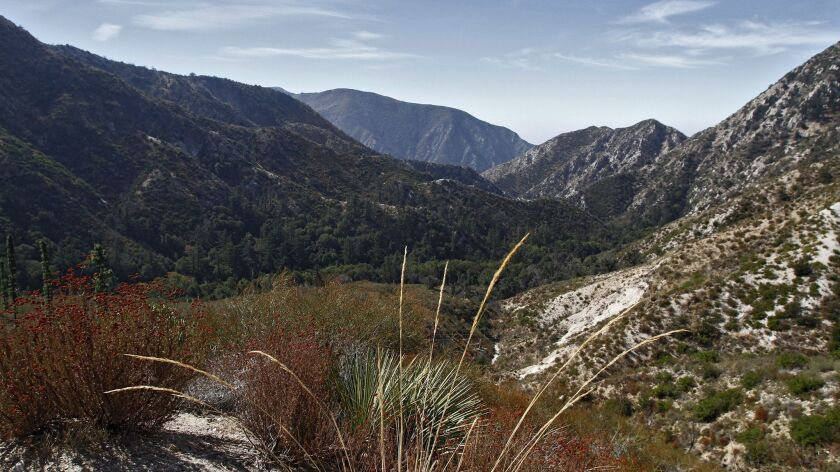 A view looking south from the Angeles Crest Highway in the Angeles National Forest, on the same day