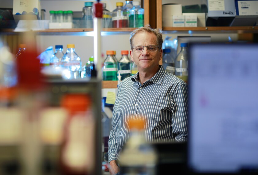 Scientist William Schief, a professor in the department of immunology and microbiology at Scripps Research.