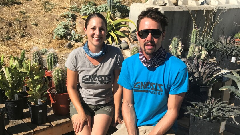 OPMS and RHS grad Megan Escalona with fiance Dean Karras at Gnosis, their newly opened exotic plants nursery in Ramona.