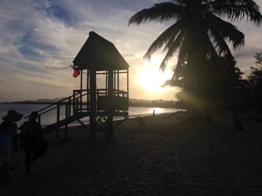 Vieques es una de dos islas municipios de Puerto Rico, la otra es Culebra, y es una de las atracciones turísticas principales de Puerto Rico que incluye un refugio nacional de vida silvestre, la reserva natural de Bahía Mosquito, una bahía bioluminiscente y caballos silvestres que merodean libremente. EFE/Archivo