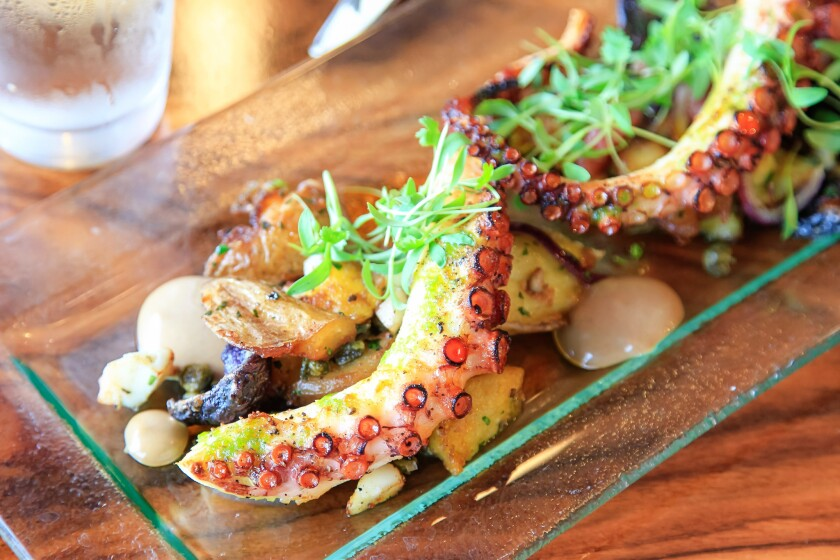 SAN DIEGO, CA July 17th, 2018 | Grilled Octopus prepared by executive chef Dave Burke at STK restaurant on Tuesday at the Andaz Hotel in downtown San Diego, California. | (Eduardo Contreras / San Diego Union-Tribune)