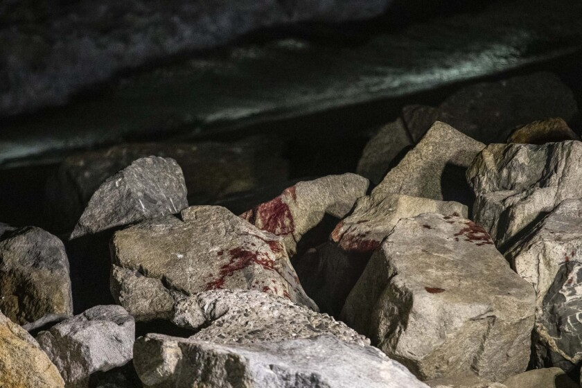 Blood stains rocks on a shoreline at night