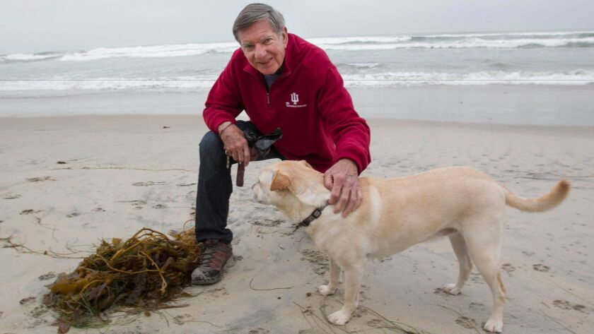 Scott MacDonald with his rescue dog, Sadie, at the beach in Del Mar where they walk with friends every morning.