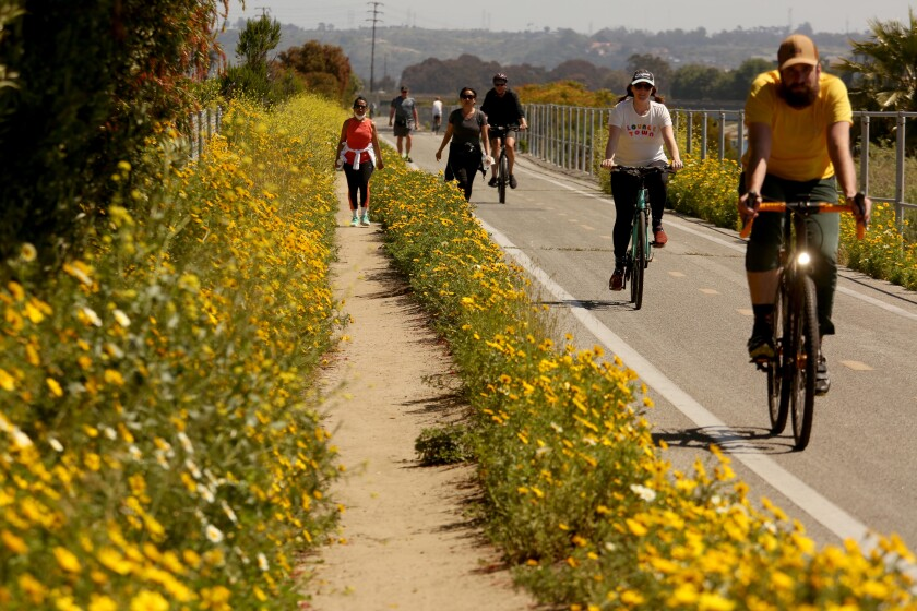 Bicyclists and walkers make their way on the Ballona Creek bike path in Marina Del Rey